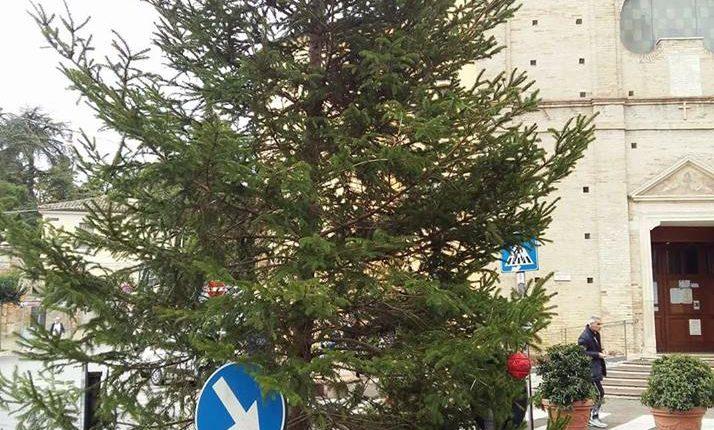 albero chieti