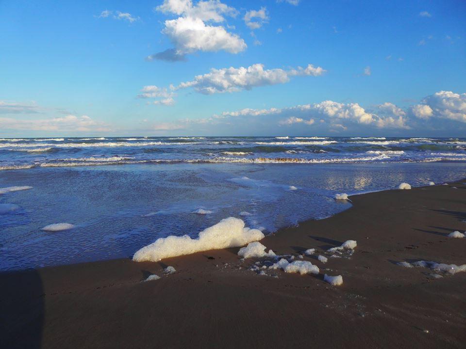 schiuma mare2