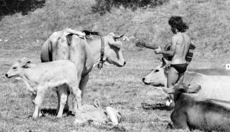 hippy villavallelonga (3)